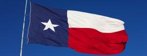 Texas CHL Renewal Update Pic A